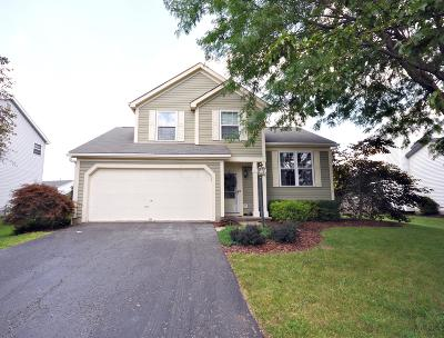 Hilliard Single Family Home For Sale: 4366 Knickel Drive