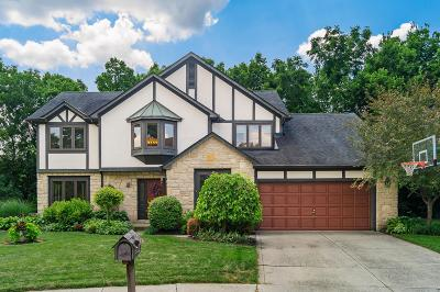 Dublin Single Family Home For Sale: 7164 Dominick Court