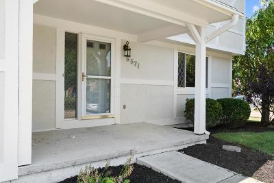 Reynoldsburg Single Family Home For Sale: 6571 Schenk Avenue