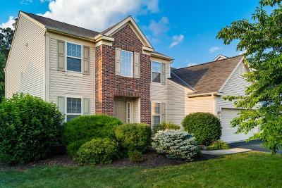 Delaware Single Family Home For Sale: 389 Inverness Avenue