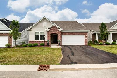 Pickerington Single Family Home For Sale: 12233 Rooster Tail Drive