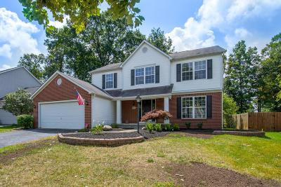 Union County Single Family Home For Sale: 579 Mill Wood Boulevard