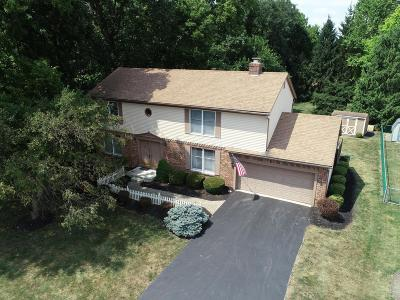 Grove City Single Family Home For Sale: 1674 Tuscarora Drive