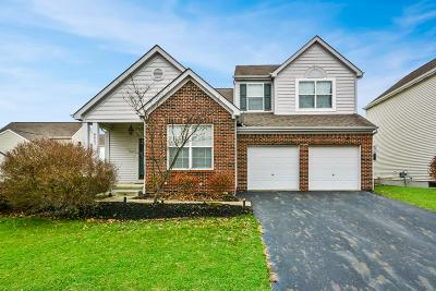 New Albany Single Family Home For Sale: 6223 Upper Albany Court
