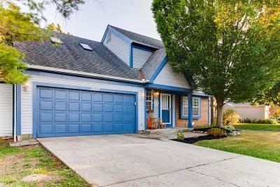 Hilliard Single Family Home For Sale: 5207 Bressler Drive