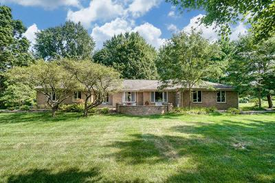Dublin Single Family Home For Sale: 5195 River Forest Road
