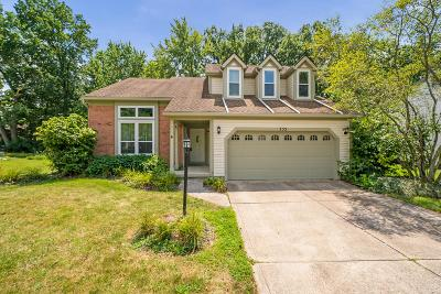 Columbus Single Family Home For Sale: 355 Charmel Place