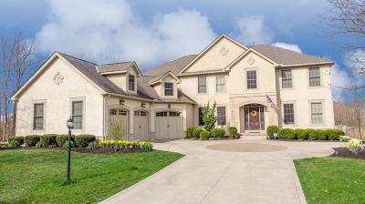 Blacklick Single Family Home For Sale: 7132 Pleasant Colony Circle