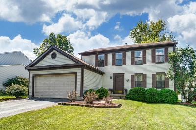 Gahanna Single Family Home For Sale: 147 Windrow Court