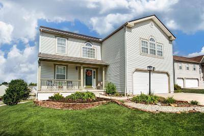 Lithopolis Single Family Home For Sale: 390 Westview Terrace