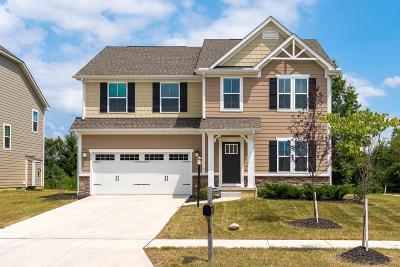 Lewis Center Single Family Home For Sale: 234 McNamara Loop