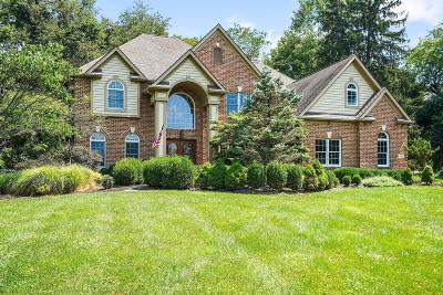 Licking County Single Family Home For Sale: 560 Jones Road