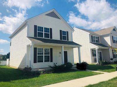 Westerville Single Family Home For Sale: 6019 Deansboro Drive
