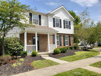 Westerville Single Family Home For Sale: 6102 Caplinger Avenue