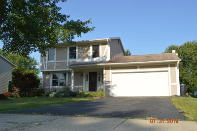 Reynoldsburg Single Family Home For Sale: 453 Brice Road
