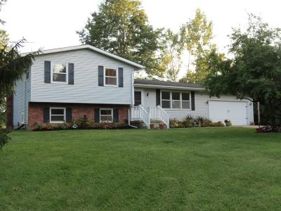 Johnstown Single Family Home For Sale: 10631 Miller Road NW