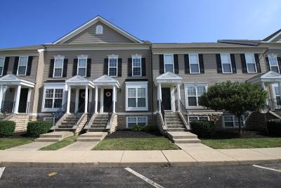 Canal Winchester Condo For Sale: 6572 Crab Apple Drive