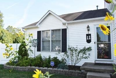 Westerville Single Family Home For Sale: 3479 Drindel Drive