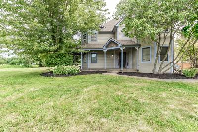 Westerville Single Family Home For Sale: 7641 Big Walnut Road