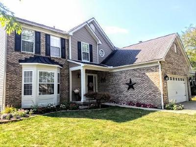 Hilliard Single Family Home For Sale: 2934 Bohlen Drive
