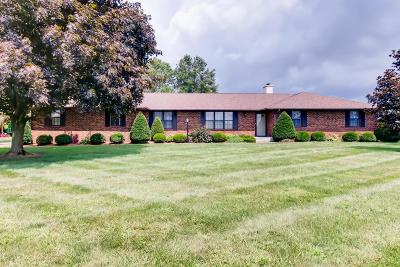 Pataskala Single Family Home For Sale: 11220 Worthington Road