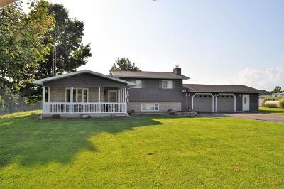 Newark Single Family Home For Sale: 7104 Gratiot Road SE
