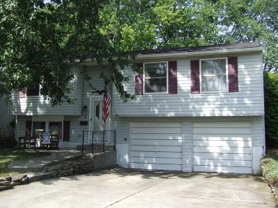 Grove City Single Family Home For Sale: 3615 Christopher Place