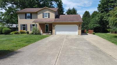 Newark Single Family Home For Sale: 424 Welsh View Drive