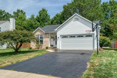 Reynoldsburg Single Family Home For Sale: 9010 Trinity Circle