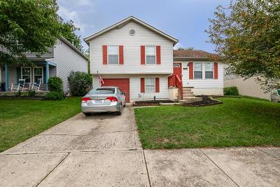 Obetz Single Family Home For Sale: 5003 Dexter Court