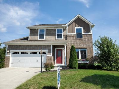 Pickerington Single Family Home For Sale: 176 Georges Creek Drive