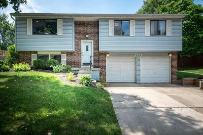 Grove City Single Family Home For Sale: 2321 Anndel Court