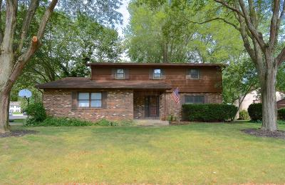 Westerville Single Family Home For Sale: 481 Liberty Lane