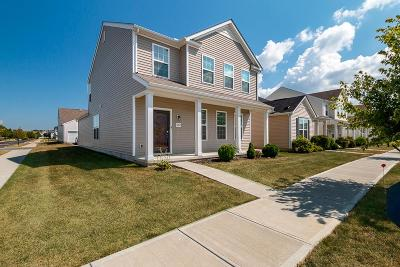 Dublin Single Family Home For Sale: 5852 Trail Creek Drive