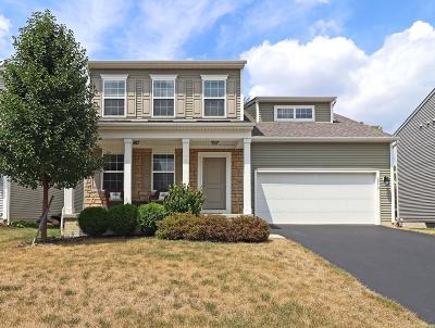 Columbus Single Family Home For Sale: 3970 Trail Ridge Drive