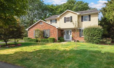 Dublin Single Family Home For Sale: 7853 Sethwick Road