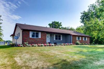 Delaware Single Family Home For Sale: 515 Curve Road
