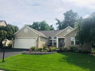 Grove City Single Family Home For Sale: 5004 Shoreside Drive