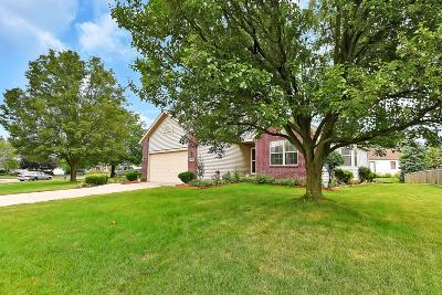 Reynoldsburg Single Family Home For Sale: 8769 Ormiston Circle