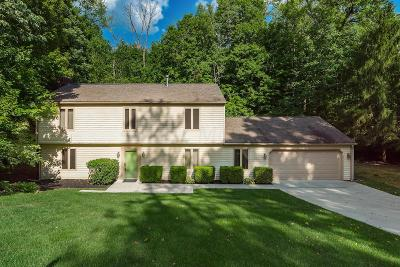 Single Family Home For Sale: 122 Chapin Place