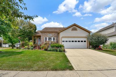 Franklin County, Delaware County, Fairfield County, Hocking County, Licking County, Madison County, Morrow County, Perry County, Pickaway County, Union County Single Family Home For Sale: 4511 Haverfield Court