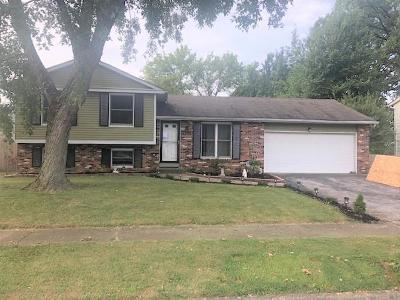 Columbus Single Family Home For Sale: 3421 Marlin Drive