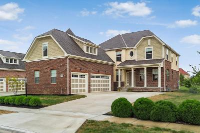 Dublin Single Family Home For Sale: 7060 Greenland Place