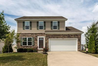 Pickerington Single Family Home For Sale: 179 Georges Creek Drive