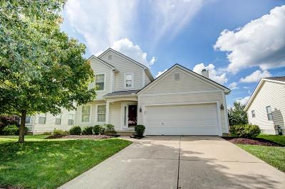 Westerville Single Family Home For Sale: 5571 Falco Drive
