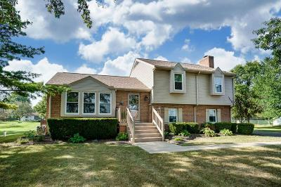 Marysville Single Family Home For Sale: 16707 County Home Road