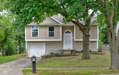 Reynoldsburg Single Family Home For Sale: 6976 Endsleigh Drive