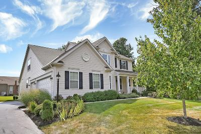 Delaware Single Family Home For Sale: 6745 Fall Brook Trail