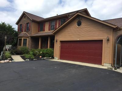 Grove City Single Family Home For Sale: 1040 White Road