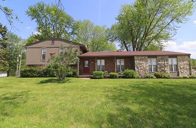 Canal Winchester Single Family Home For Sale: 8890 Diley Road